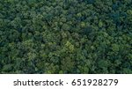 aerial top view of the forest ... | Shutterstock . vector #651928279