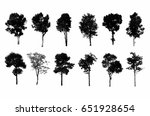 black tree silhouettes on white ... | Shutterstock . vector #651928654