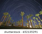 night in egypt  palm trees... | Shutterstock . vector #652135291