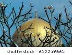 selective focus. cambodia tree... | Shutterstock . vector #652259665