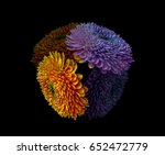 Small photo of Colorful orange and purple floral fine art detailed flower macro photography of a pair of isolated open blooming gerbera blossoms with their shadow - floral fantasy first contact