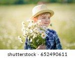 happy childhood.  cute boy in a ... | Shutterstock . vector #652490611