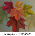 red maple leaves background and ... | Shutterstock .eps vector #652545859