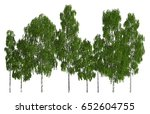 trees in a row isolated on... | Shutterstock . vector #652604755