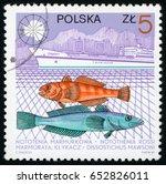 poland   circa 1987  post stamp ... | Shutterstock . vector #652826011