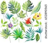 set leaf. exotics. vintage... | Shutterstock . vector #652890565
