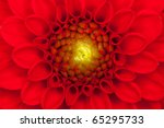 Close Up Photo Of A Red Dahlia...