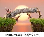 Team Of Ants Constructing...