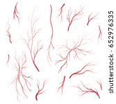 human eye veins and arteries ... | Shutterstock .eps vector #652976335