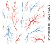 human eye veins  arteries  red... | Shutterstock .eps vector #652976371