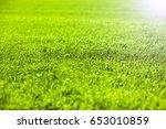 green grass background   Shutterstock . vector #653010859