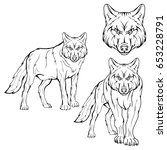 Wolf Set. Vector Sketch Of A...