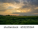 Green Field Of Grain After A...