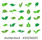 a set of abstract leaves of... | Shutterstock .eps vector #653256025