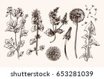 hand drawn vector set with ... | Shutterstock .eps vector #653281039