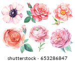 Stock photo peonies anemones ranunculus roses watercolor flower set botanical illustration 653286847