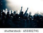 crowd during a concert | Shutterstock . vector #653302741
