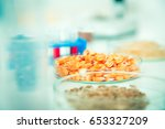 chemical laboratory of the food ... | Shutterstock . vector #653327209