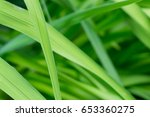 green leaves close up | Shutterstock . vector #653360275