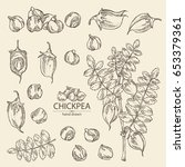 collection of chickpea ... | Shutterstock .eps vector #653379361