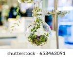 examples of herbs in glass... | Shutterstock . vector #653463091