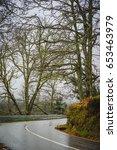 forest road in the serra da...   Shutterstock . vector #653463979