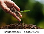 hands of farmer growing and... | Shutterstock . vector #653504641