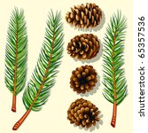 pine tree branches and cones.... | Shutterstock .eps vector #65357536