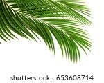 palm leaf for your design.... | Shutterstock . vector #653608714