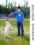 teenager playing with a dog   Shutterstock . vector #653617309