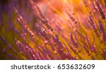 magical nature background with... | Shutterstock . vector #653632609