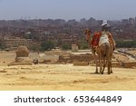 landscape with man on camel... | Shutterstock . vector #653644849