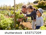 father and children looking at... | Shutterstock . vector #653717209