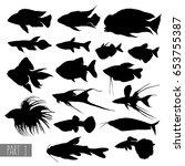 most popular aquarium fish... | Shutterstock .eps vector #653755387