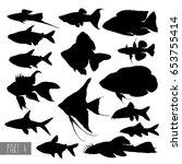 most popular aquarium fish... | Shutterstock .eps vector #653755414