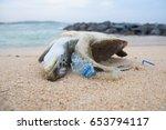 Dead Turtle Among Plastic...