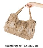 Women Bag At Hand Isolated On...