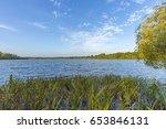 strong wind at lake krickenbeck ...   Shutterstock . vector #653846131