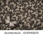 white common tiger butterfly  ... | Shutterstock . vector #653940655