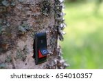 power switch installed on birch ... | Shutterstock . vector #654010357