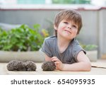 little boy playing with hedgehog | Shutterstock . vector #654095935