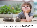 little boy playing with hedgehog | Shutterstock . vector #654096025