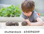 little boy playing with hedgehog | Shutterstock . vector #654096049