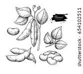 soybean hand drawn vector... | Shutterstock .eps vector #654102511