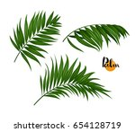 illustration of three tropical... | Shutterstock .eps vector #654128719