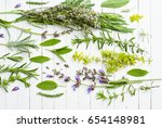 spice and herbal plants with... | Shutterstock . vector #654148981