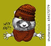 vector raccoon with knitted hat ... | Shutterstock .eps vector #654173779