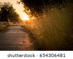Golden Sunset Path