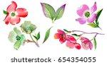 wildflower cornus florida...   Shutterstock . vector #654354055