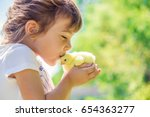 Stock photo the child holds a chicken in his hands the girl and the bird selective focus 654363277